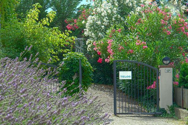 TELOS-Aussen-Eingang-Blumen-D2406HDRd.jpg