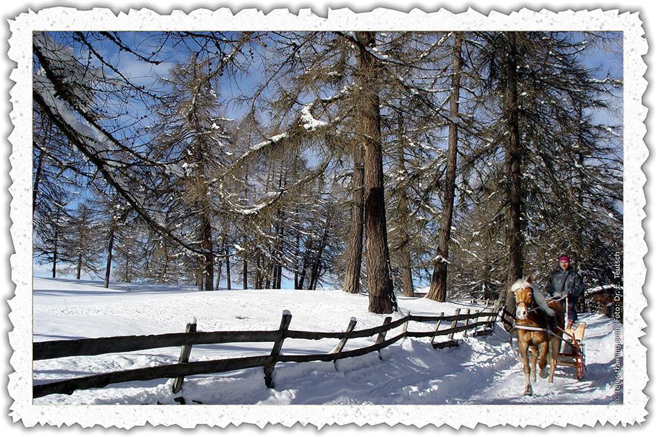 Weihnachtskarte 07 Pferdeschlitten 05717nb