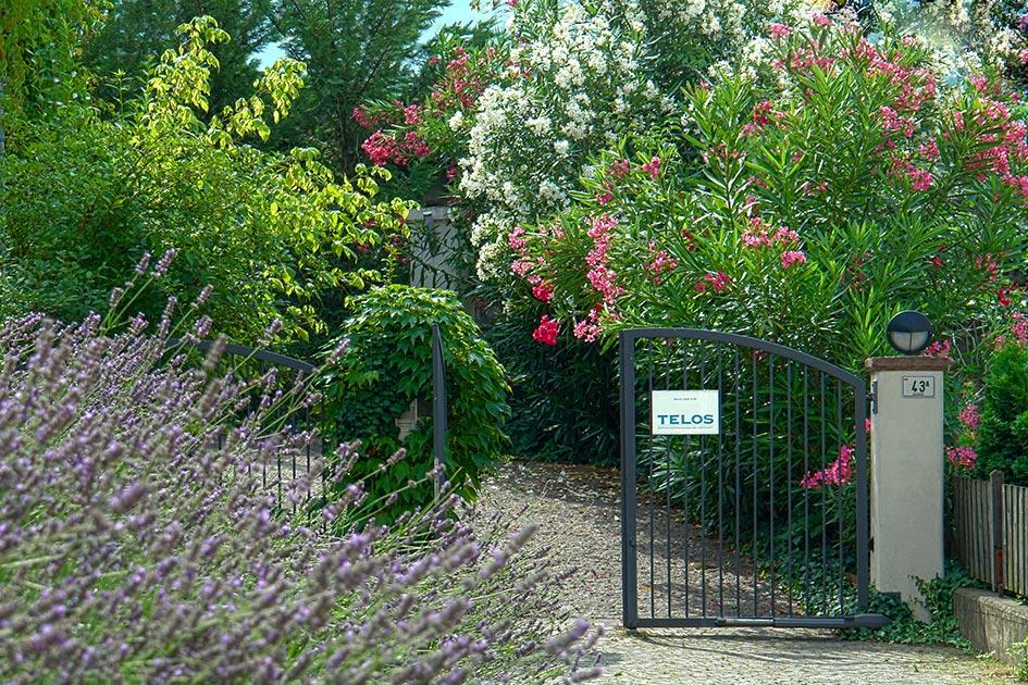 TELOS Außengelände Eingang Gartentor Blumen / Foto: TELOS - d2406e