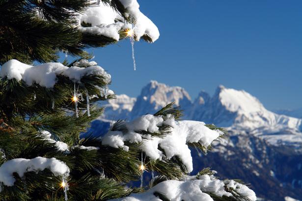 Winter Schnee Baum Eiszapfen Sonne Lichtreflexe Berge Dolomiten B0212b