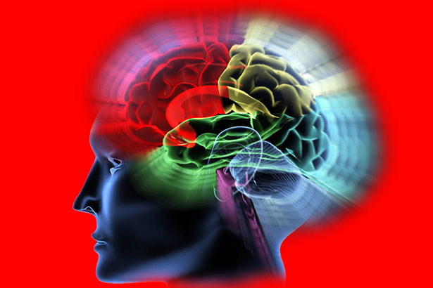 Gehirn Kopf 09648csppr