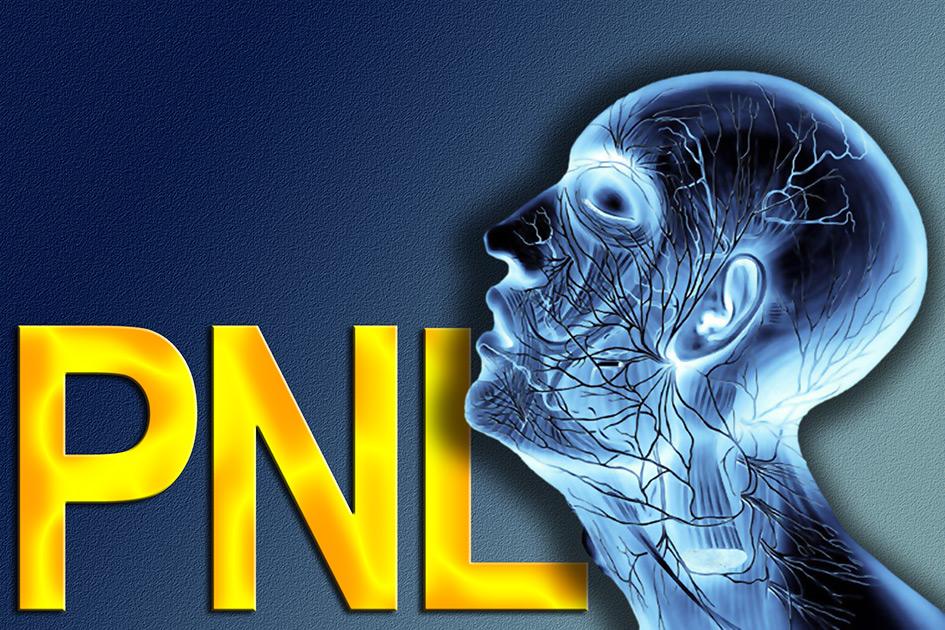Gefühle Gehirn Kopf Nerven NLPit 6727pnl - Telos