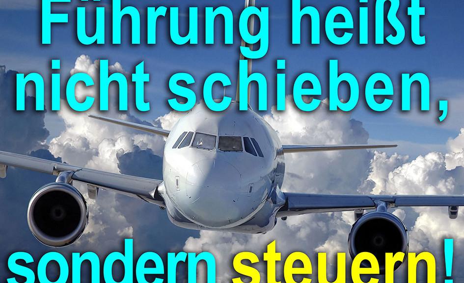 Flugzeug Pilot Führung schieben steuern / Grafik: TELOS - web11891f