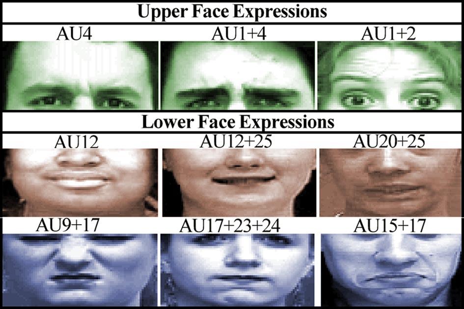 Körpersprache Gesichtsausdrücke Mimik Erkennung Computer 5809b.jpg