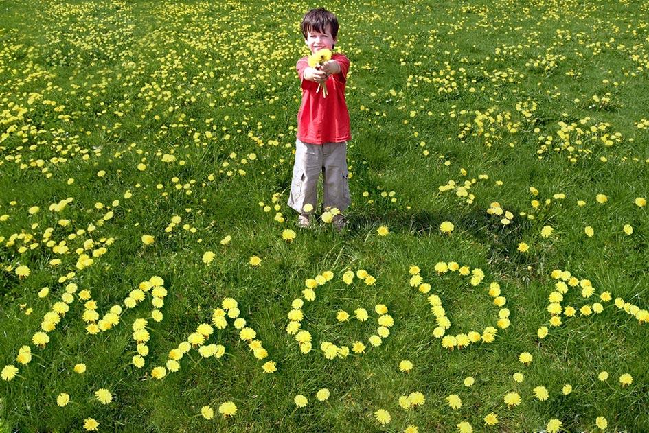 Löwenzahnwiese Junge Blumenstrauß Namen Magda 10083b