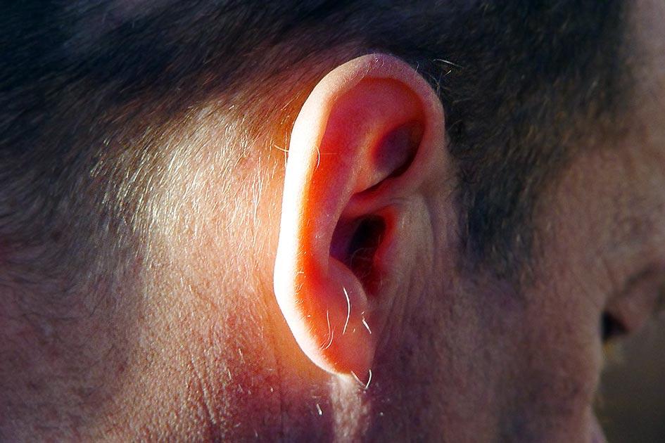 Ohr hören zuhören Mann 00153c