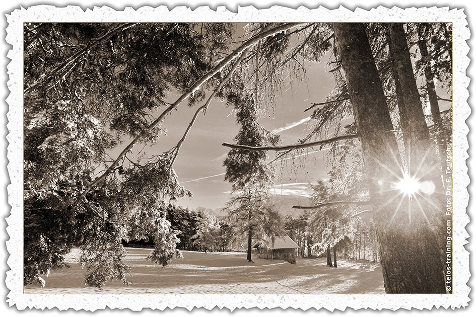 Weihnachtskarte 08 Winter Schnee Brunner Wiese Hütte D3271cbb