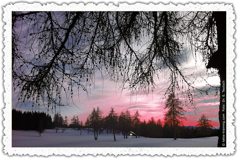 Weihnachtskarte 19 Winter Schnee Salten Langfenn Abend Bäume Hütte Licht IMG_7767d