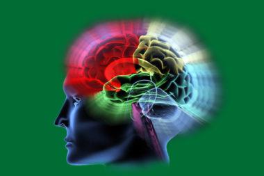 Gehirn Kopf grün / Bildbearbeitung: TELOS - 09648cspg
