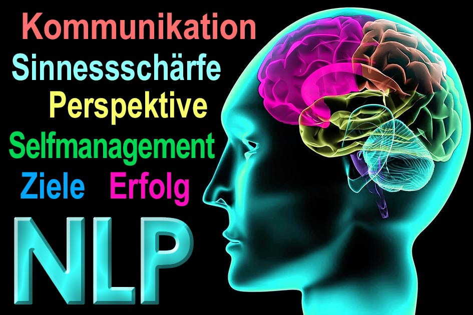 Gehirn Kopf NLP / Grafik: TELOS - 09648hgnlp