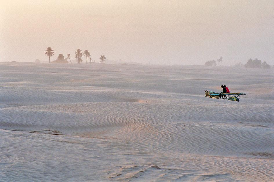 Tunesien Wüste Sanddünen Fuhrwerk Esel Männer Vater Sohn Abend / Foto: TELOS - 61540026b
