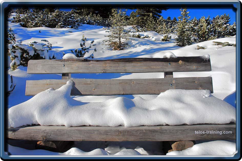 Frischekarten Schneebank / Foto: TELOS - B0205c