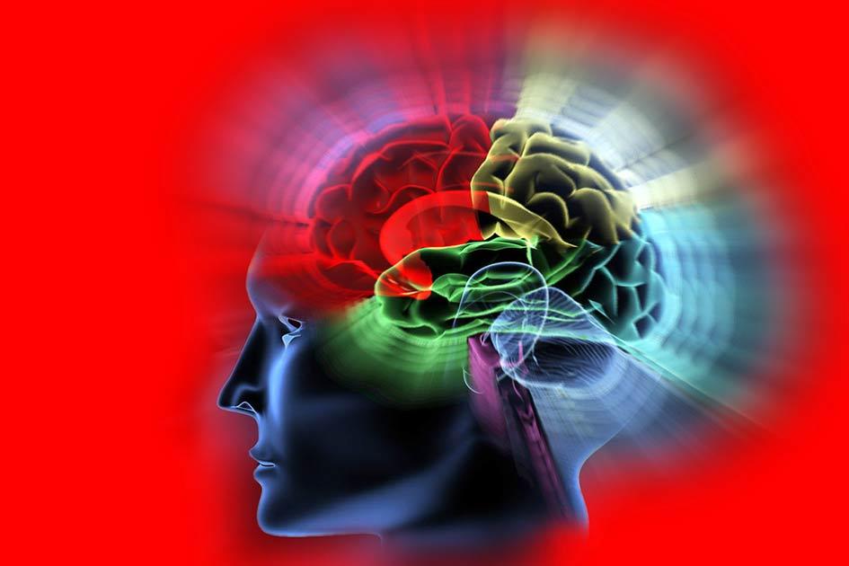 Gehirn Kopf rot / Grafikbearbeitung: TELOS - 09648csprG