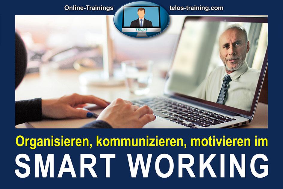 TELOS Onlinetraining Organisieren kommunizieren motivieren im Smart Working Logo 3008 / Grafik: TELOS